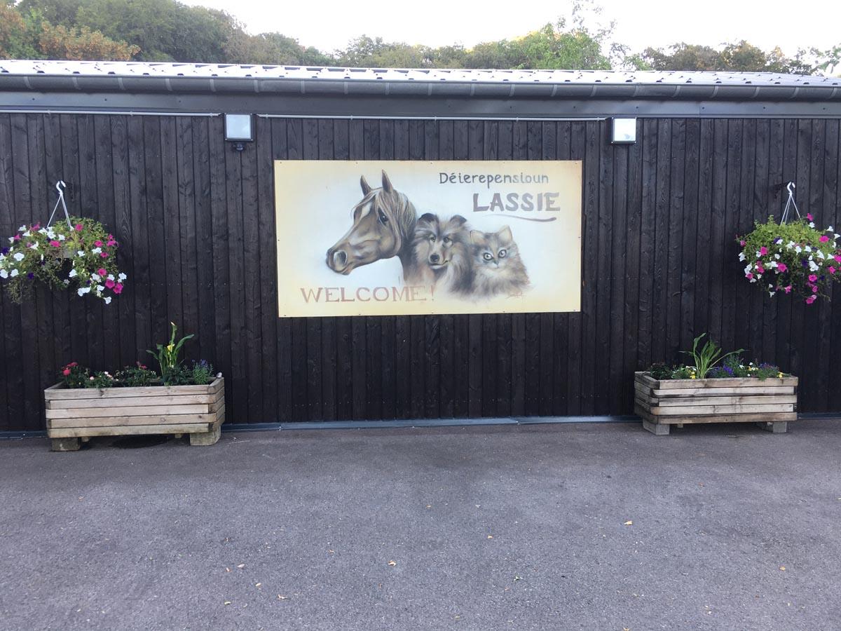 einrichtung-umgebung-lassie-luxemburg