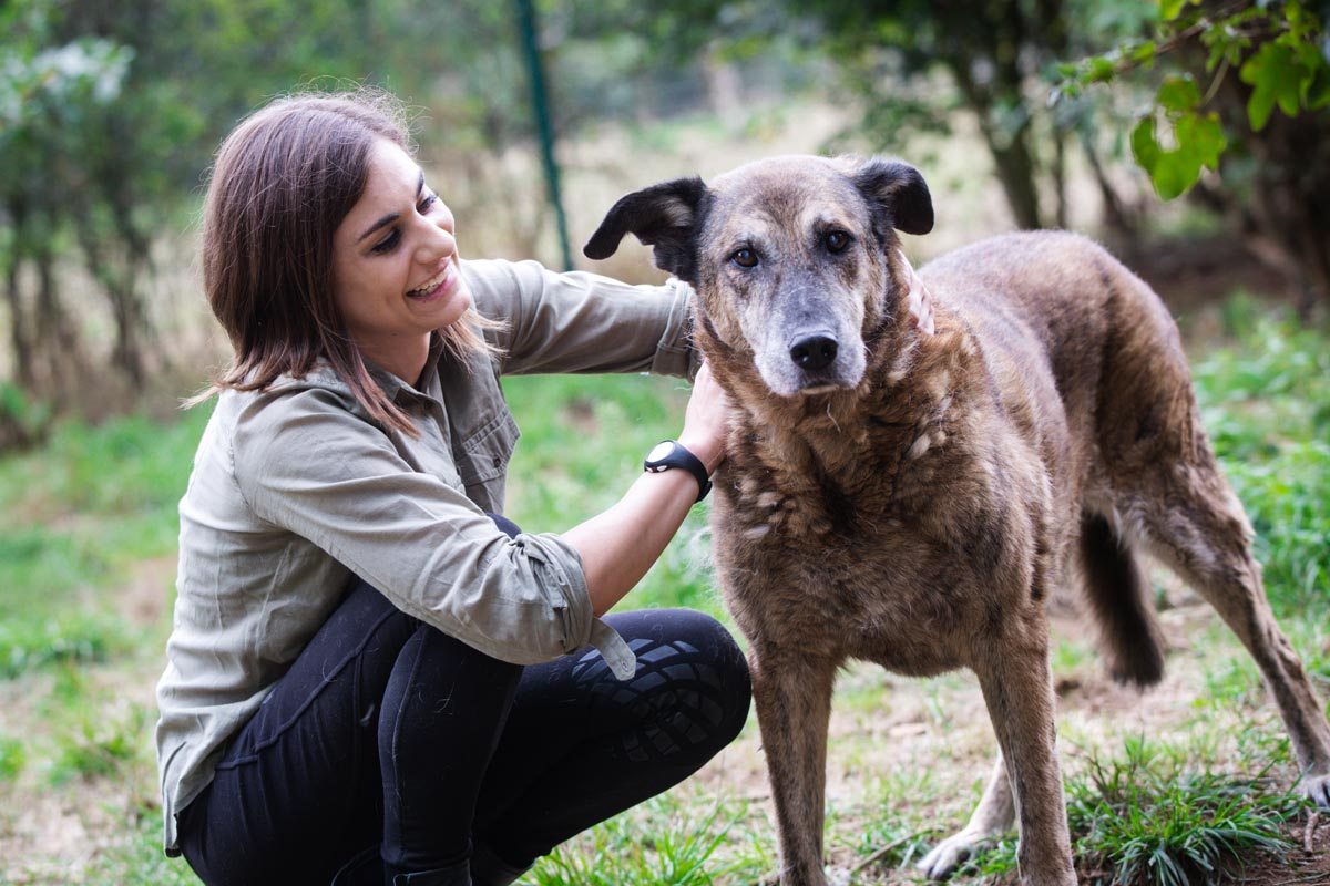 huta-tagesversorgung-hund-luxemburg